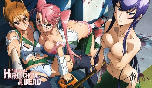 297 Highschool of The Dead PLAYMAT Includes ONE Exclusive Guardian PLAYMAT Bag - Custom Play MAT Anime PLAYMAT