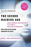 The Second Machine Age - Work, Progress, and Prosperity in a Time of Brilliant Technologies