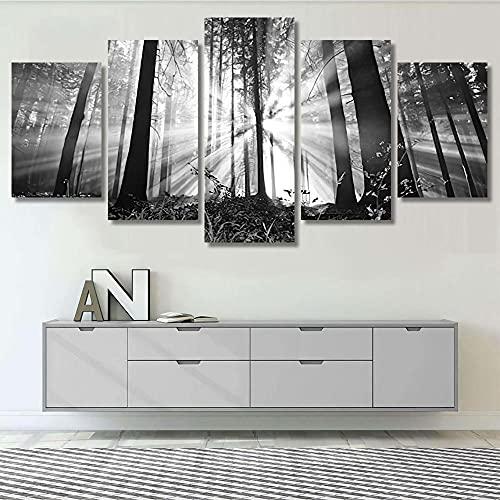 GSDFSD Cuadros Decoracion Dormitorios 5 Piezas 150x80cm - Cuadro sobre Lienzo - Impresión En Lienzo Montado sobre Marco De Madera - Amanecer en un Bosque