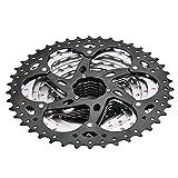 Dioche Cassette de Velocidad de Bicicleta, Bicicleta Rueda Libre Piñón 10 Velocidad 11-42T Accesorio de Reemplazo de...