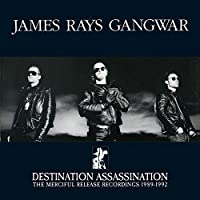 Destination Assassination by James Rays Gangwar
