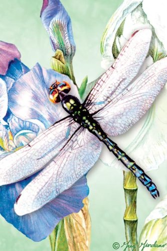 Tree-Free Greetings Noteables Notecards In Reusable Embossed Tin, 12 Card Assortment, Recycled, 4 x 6 Inches, Dragonflies, Multi Color (76016) Photo #4