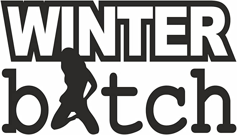 Folien Zentrum Winter Bitch Winterauto Schnee Snow Shocker Hand Auto Aufkleber Jdm Tuning Oem Dub Decal Stickerbomb Bombing Fun W Schwarz Schwarz Schwarz Schwarz Schwarz Auto