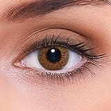 LENZOTICA Optique & Lentilles