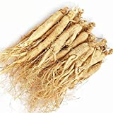 Material de raíz de ginseng Té de ginseng de raíz de ginseng blanco Ren Shen para la salud (500...