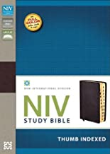 NIV Study Bible, Bonded Leather, Burgundy, Indexed, Red Letter Edition