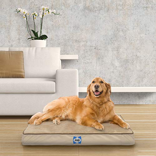 """Sealy Dog Bed Ultra Plush Dog Bed - Orthopedic Foam pet Bed with Machine Washable Plush Cover, Tan, Large (42"""" x 32"""")"""