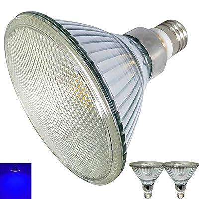 2-Pack,Glass PAR38 LED Blue Light Bulbs,120V,Waterproof,Indoor&Outdoor,E26 PAR38 Blue Led Flood Light,90W-120W Halogen Replacement.