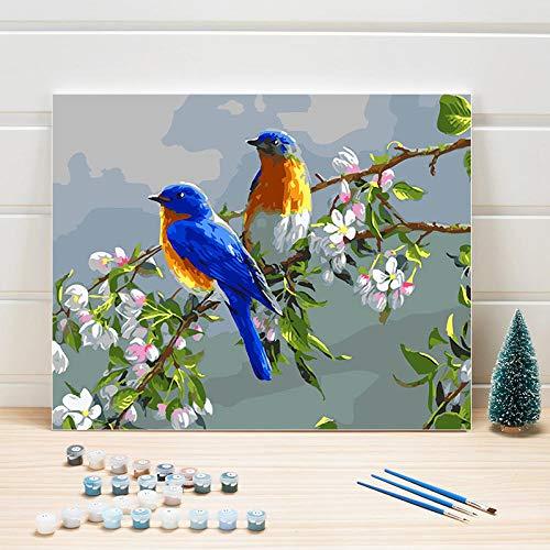 JieXi Mi binbin Malen nach Zahlen Vögel auf Leinwand DIY Malen nach Zahlen Acrylbild nach Zahlen One Piece Color by Numbers Für Erwachsene 40x50cm-Kein Rahmen
