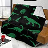 Attackingstop Flannel Shaggy Fleece Blanket, Machine Washable Queen Size Blanket, Cartoon Green Dinosaur Lesothosaurus Animal, Throw Couch Cover, for Travel,Teenager,Chair