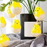 WYXMZ Forma de Huevo de Pascua 10 led Adornos de luz Colgantes Decorativos Feliz Pascua Pollito Conejo luz led Linterna Cuerda Fiesta de Vacaciones en casa