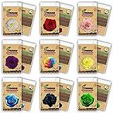 GEOPONICS (Dieser Auftrag umfassen 9 PACKS jede Farbe 50 SEEDS) SEEDS ROSE - Rainbow Rosa, Rot, Violett Grün Rosen-Samen