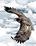 N\A Pintar por Numeros Niños con Cepillos DIY Pintura Al Óleo Kit | para Manualidades - Águila Volando 40X50Cm