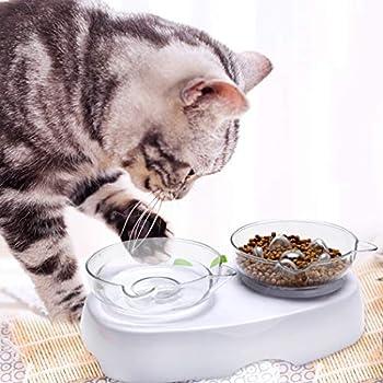 Bangcool Pet Feeder Set Plastique Anti Slip Spine Protection Cat Bowl Cat Cat with Base Gamelles pour Chiens