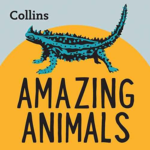 Amazing Animals cover art