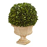 Nearly Natural 12in. Boxwood Topiary Ball Preserved Decorative Urn Silk Plants, Green