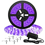 Onforu 5M Luz UV Tiras Cadenas LED Ultravioleta 300 LEDs 12V 2835 Luz Negra, Adaptador Incluido, Iluminación Interior Flexible No-Impermeable para Bar Club DJ Disco Fiesta KTV Pintura Corporal