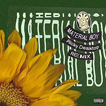Material Boy (Ricky Desktop Remix)