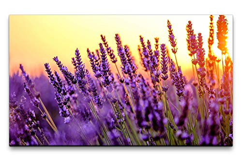 Paul Sinus Art Bilder XXL Lavendel Felder 120x70cm Wandbild auf Leinwand