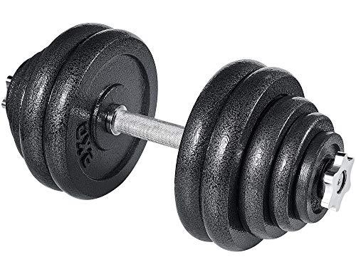 arteesol Hantelset, Gusseisen Kurzhanteln Hanteln Hantel Set 10kg 15kg 20kg 30kg für Professionelle Fitness-Leute (30kg Hantel-Single)