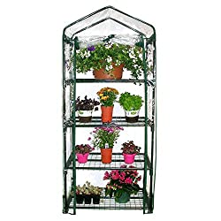 Mini Greenhouse - Small Greenhouses for Sale on floral greenhouse, botany greenhouse, snow greenhouse, outdoor greenhouse, bonsai greenhouse, gardening greenhouse, white greenhouse, horticulture greenhouse, conservatory greenhouse, tree greenhouse, green greenhouse, indoor greenhouse, vegetable greenhouse, plants greenhouse, spring greenhouse, weed greenhouse, tropical greenhouse, container greenhouse, nursery greenhouse, home greenhouse,