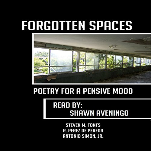 Couverture de Forgotten Spaces: Poetry for a Pensive Mood