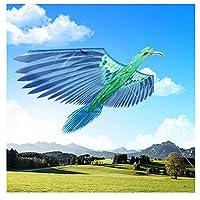 大人と子供が飛べる立体的な孔雀とカササギの凧。ビーチ旅行公園での家族向けの屋外ゲームに適しています。(Color:B)