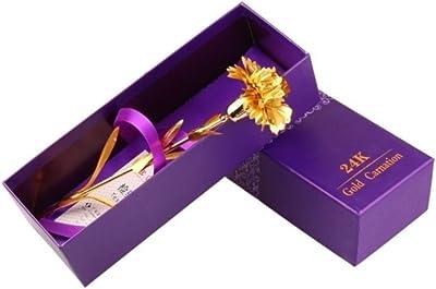 母の日の贈り物ゴールドカーネーション Mother's Day gift gold carnation (カーネーション) [並行輸入品]