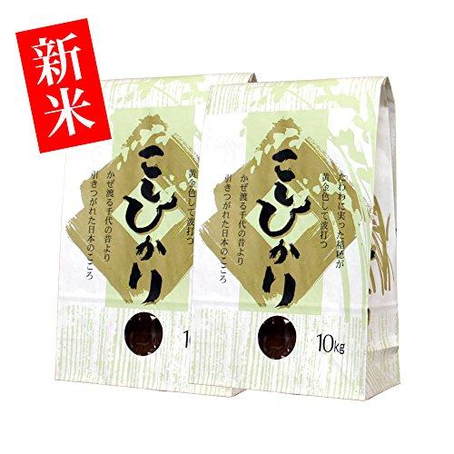 結婚式の引出物のお返しに【新米・玄米】新潟米コシヒカリ 20kg(10kg×2袋) [新潟産こしひかり]