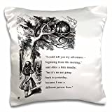 3dRose Way Ought I go from here Chesire cat-Alice in Wonderland Quote-Pillow Case, 16-inch (pc_193784_1)