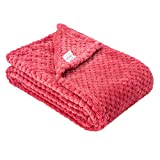 Fuzzy Blanket or Fluffy Blanket for Baby, Soft Warm Cozy Coral Fleece Toddler, Infant or Newborn Receiving Blanket for Crib, Stroller, Travel, Decorative (28Wx40L, XS-Raspberry)