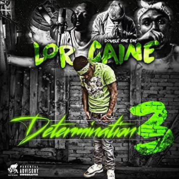 Determination 3