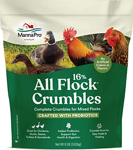 Manna Pro All Flock with Probiotics Crumble | Formulated with Vitamins and Minerals to Support a Balanced Diet | 8 Pounds