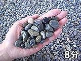 天然大磯石(大磯砂利)20kg袋 選べる5サイズ(3mm~30mm) (8分(25-30mm))