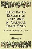 Illustrated Descriptive Catalogue of American Grape Vines - A Grape Growers Manual (English Edition)