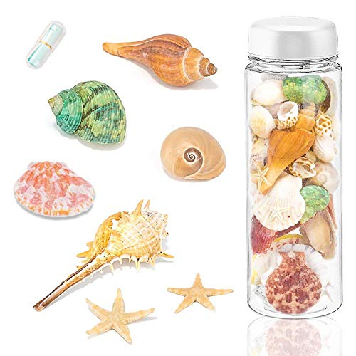 Sea Shells Mixed Beach Seashells with Wish Bottle and Mini Paper Roll, 150 PCS Ocean Sea Shell Colorful Natural Conch Starfish for Candle Making Home Decoration Party Wedding Vase Filler