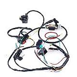 Cisno complet Electrics CDI Bobine câblage Loom Harnais Kick pour 50cc 110cc 125cc ATV Dirt bike