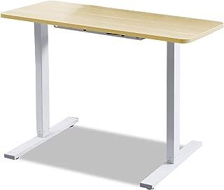 120 * 60cm Electric Standing Desk Sit to Stand up Motorised Desks Oak/White
