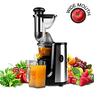 Hornbill Juicer Slow Masticating Juicer Cold Pr...