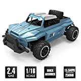 Tobeape RC Car, Wireless Remote Control RC Toy Car, 1/16 Scale High Speed RC Truck, 4 Wheel Drive Jeep,Birthday Gift for Kids and Adults (2 Rechargeable Batteries Included) - D8 Blue