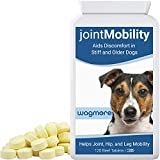 The Dog Company Dog Joint Care Supplement with Glucosamine, Turmeric and Boswellia For