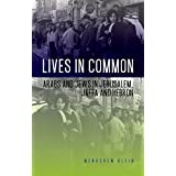 Lives in Common: Arabs and Jews in Jerusalem, Jaffa and Hebron (English Edition)