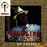 Portraits: Growling Tiger of Calypso