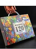 48/72/120/160/180Color Juego de lápices de Colores de Madera Profesional óleo HB Dibujo boceto - 120 Colores,