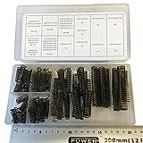 Sortimentskasten mit Kompressionsfedern, schwarz lackiert, 114 Stück