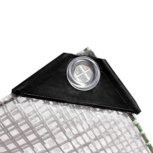 LJIANW-lonas impermeables exterior, Lona Transparente, Impermeable Transparente Hoja De Lona con Ojales Cubierta De Muebles PVC para Acampar Pescar Jardinería (Color : Claro, Size : 2x5m)
