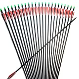 30-Inch Carbon Arrow 6.2mm Practice Hunting Arrows 500-Spine Archery Arrows Custom for 20/25/30/35/40/45/50/55/60/65 Lbs Traditional Recurve Compound Bow Longbow Targeting Shooting