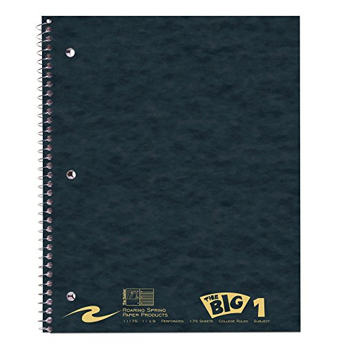 Roaring Spring Stasher College Ruled One Subject Spiral Notebook, 3 Hole Punched, Cover Pocket, 11 x 9 175 Sheets, Assorted Colors