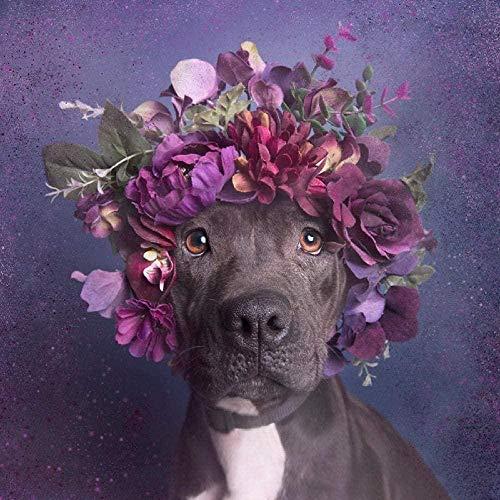 KSJNBPLS 5D pintura de diamante niños Staffordshire Bull Terrier con una corona de manualidades de bricolaje