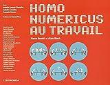 Homo numericus au travail